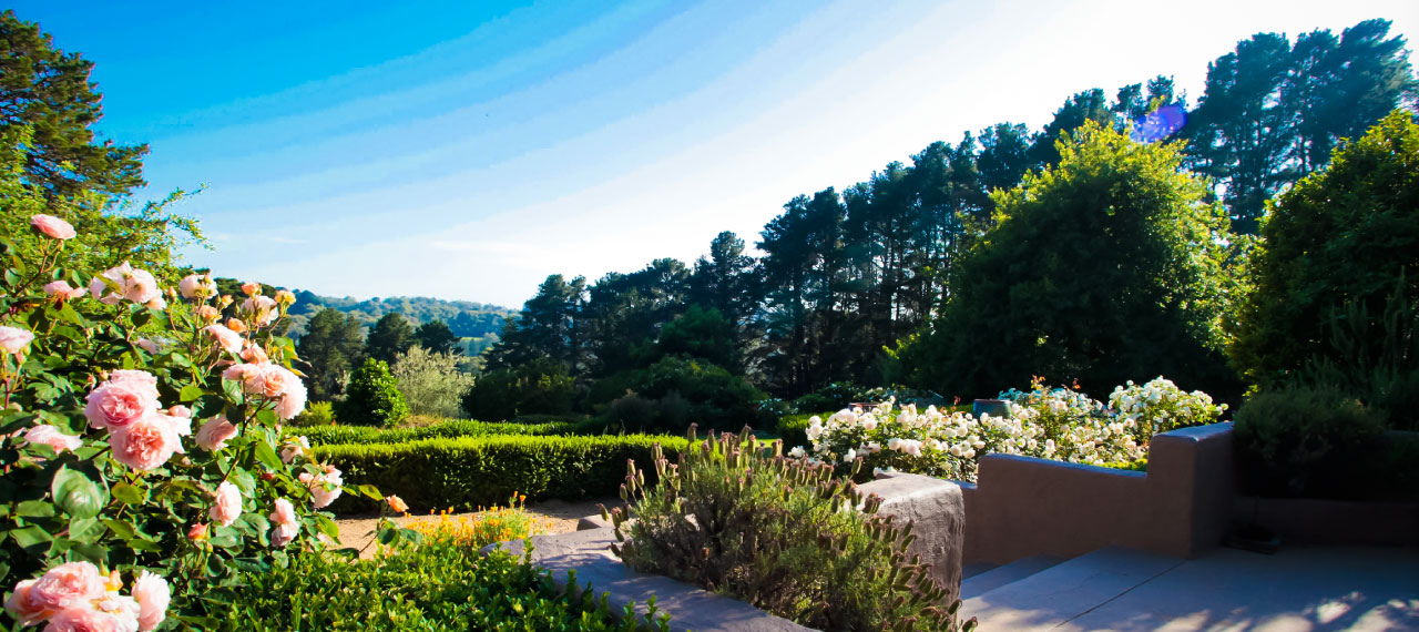 the lodge garden view