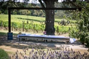 the lodge vinyard - tussie mussie